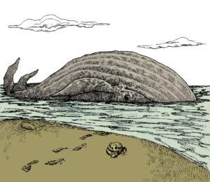 vincenzo ventura - balena